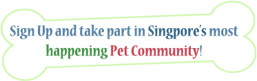 Be a member of Sg Pets! | Sg Pets by Timzstudio