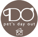 Pet's Day Out - Singapore Pets Services | Sg Pets
